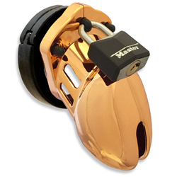 CB-6000S Gold Chastity Cage