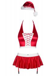 Ms Claus Sexy Christmas Costume For Women
