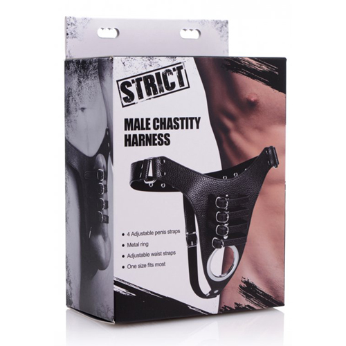 Male Chastity Harness