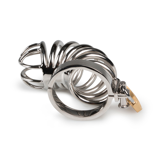 Metal Chastity Cage image .3