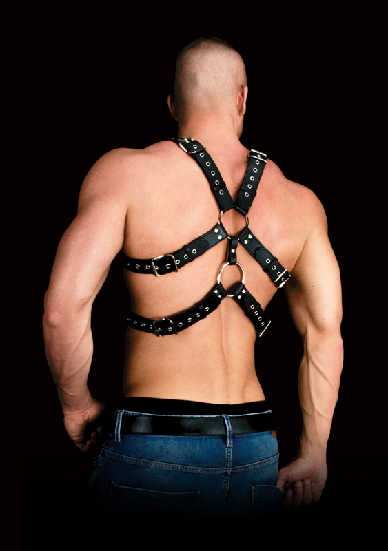 Andres Chest Harness image