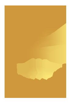 4x Accessoires & Fun